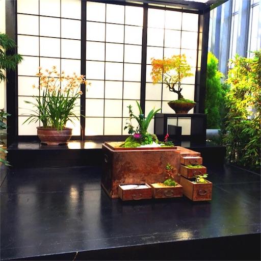 f:id:haruka-sato-chf:20151207231053j:image