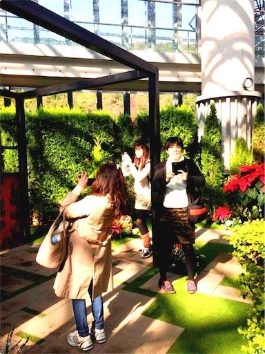 f:id:haruka-sato-chf:20151207231246j:image
