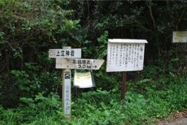 f:id:haruka-sato-chf:20151212232325j:plain:w300