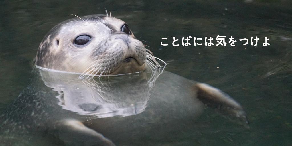 f:id:haruka1710:20190406234902p:image