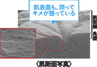 f:id:haruka333888:20190625153958p:plain