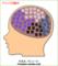 クッパの脳内w