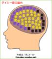 デイジー姫の脳内w