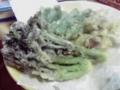 釜石・タラノメの天ぷら