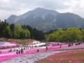 秩父・羊山公園・芝桜の丘
