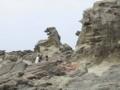 男鹿・ゴジラ岩
