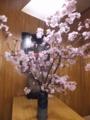 170506旭川・寿司幸