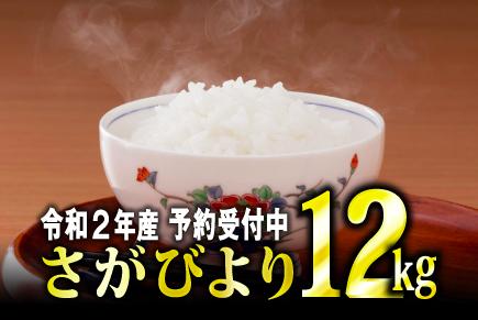 f:id:haruka_sako:20201201114952p:plain
