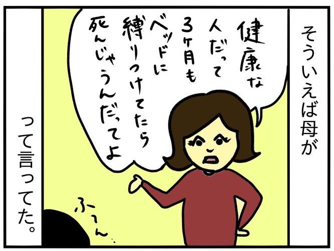 f:id:harukanboh:20170821191559j:plain