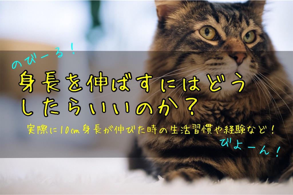 f:id:harukazu1:20190731150932j:image