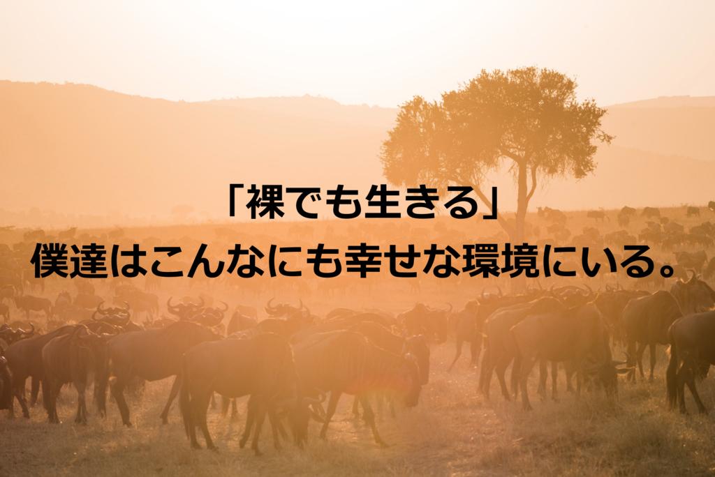 f:id:haruki19940608:20161009211109p:plain