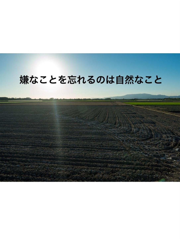 f:id:haruki19940608:20161208081307j:image