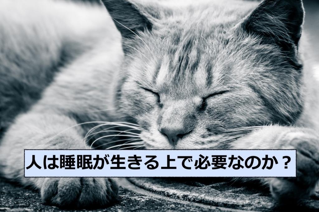 f:id:haruki19940608:20180404001635j:plain