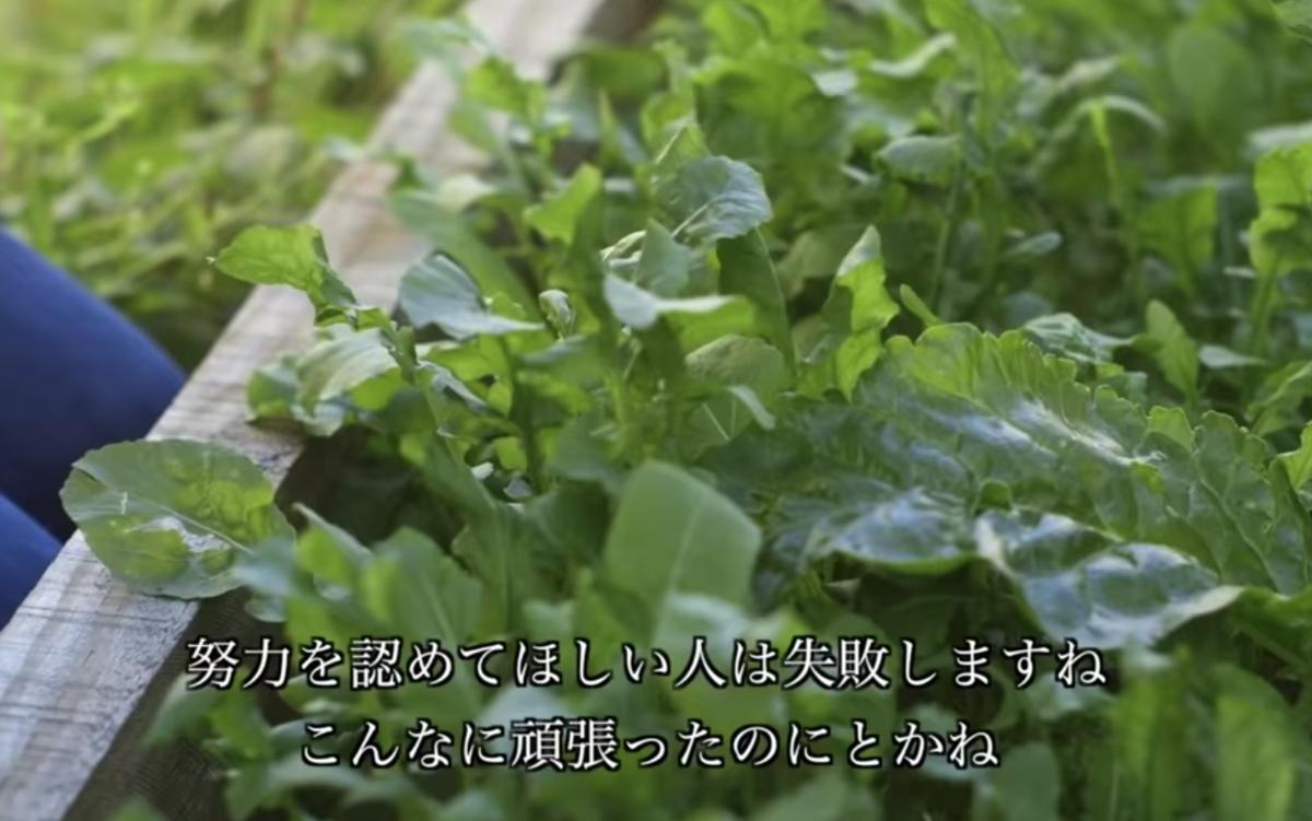 f:id:haruki19940608:20200418204046p:plain