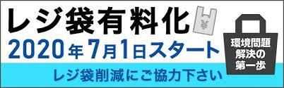 f:id:haruki8282:20200925193552j:plain