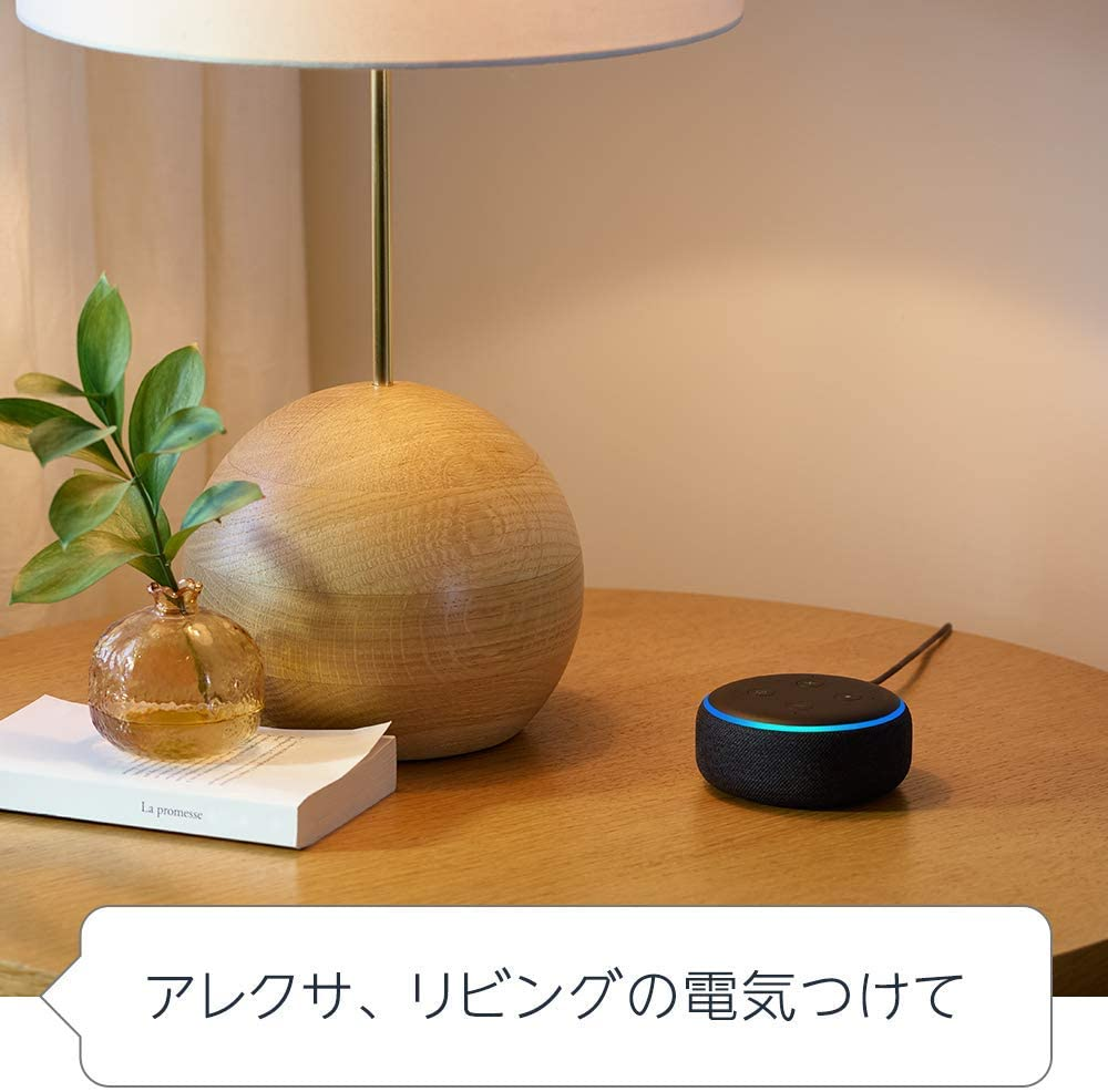 f:id:haruki8282:20201217205008j:plain