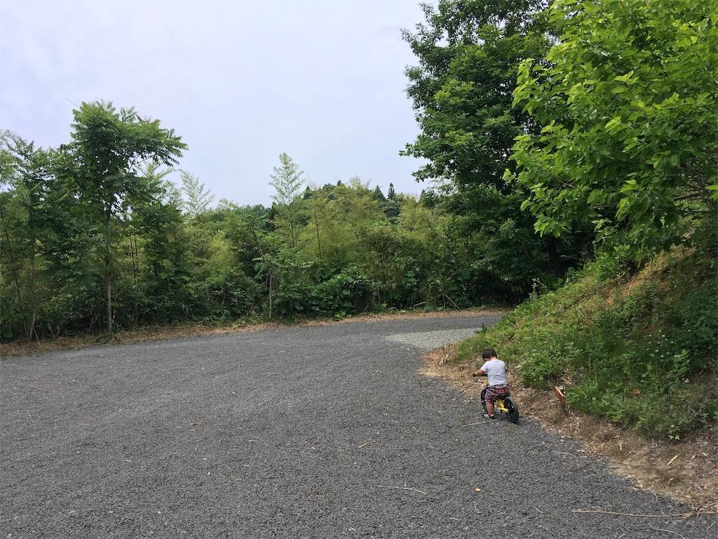 オートキャンプいわしろ高原のキャンプサイト