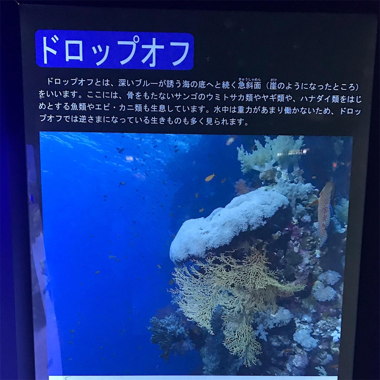 f:id:haruki_mattari:20191117202220j:image