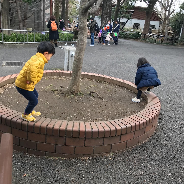 f:id:haruki_mattari:20200125202144j:image