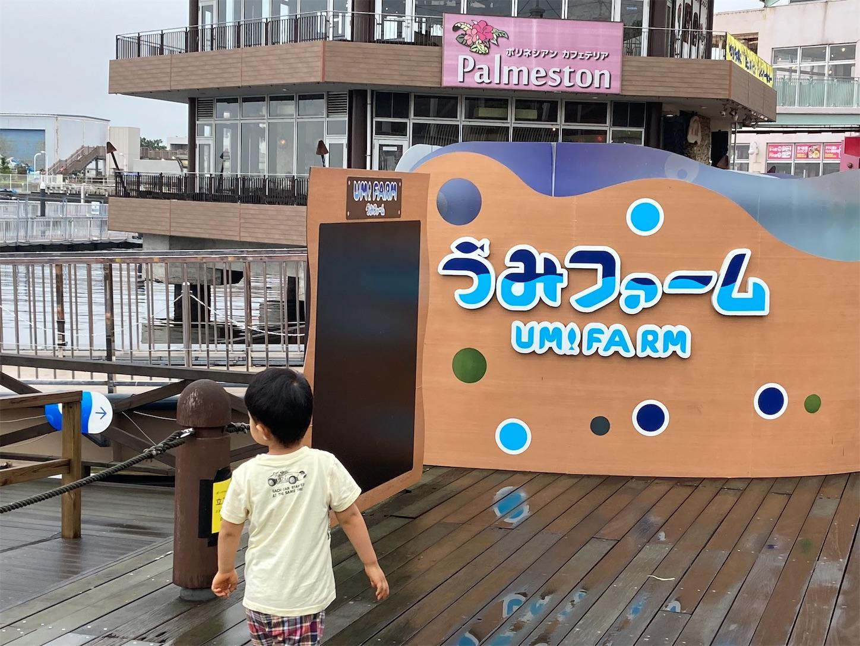 f:id:haruki_mattari:20200617114700j:plain