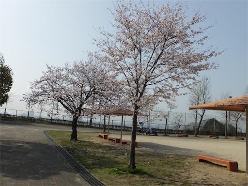 f:id:harukoyama:20180330163054j:image