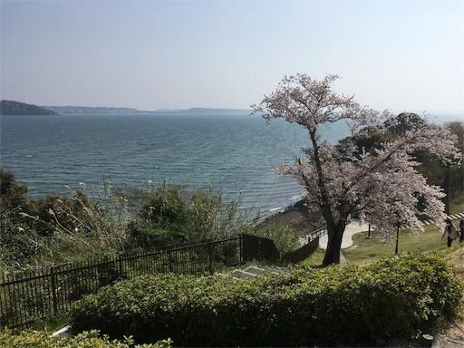 f:id:harukoyama:20180407141152j:image