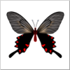 f:id:harukunmama:20160325111518p:plain
