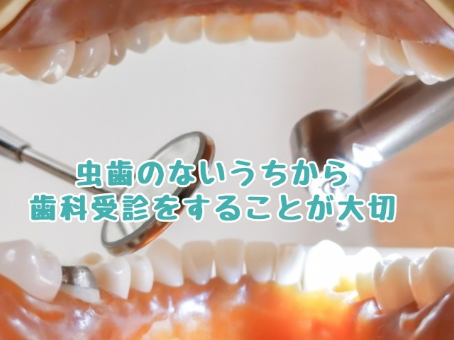 f:id:harukunmama:20190401131240j:image