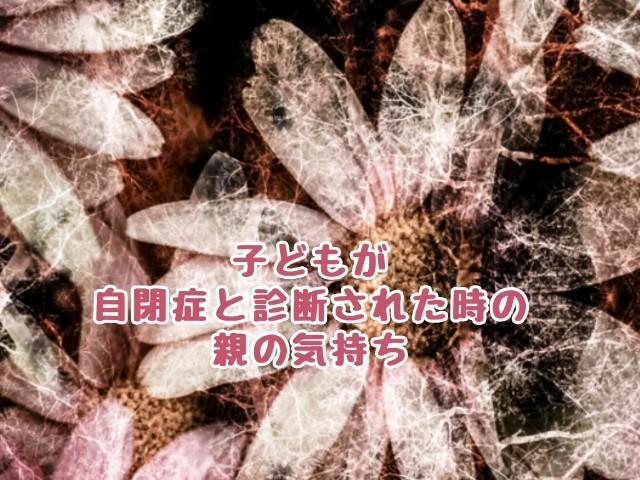f:id:harukunmama:20190401171330j:plain