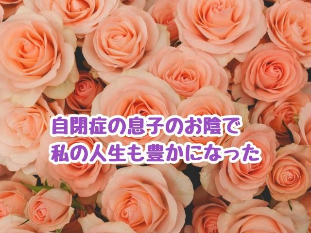 f:id:harukunmama:20190402185137j:image