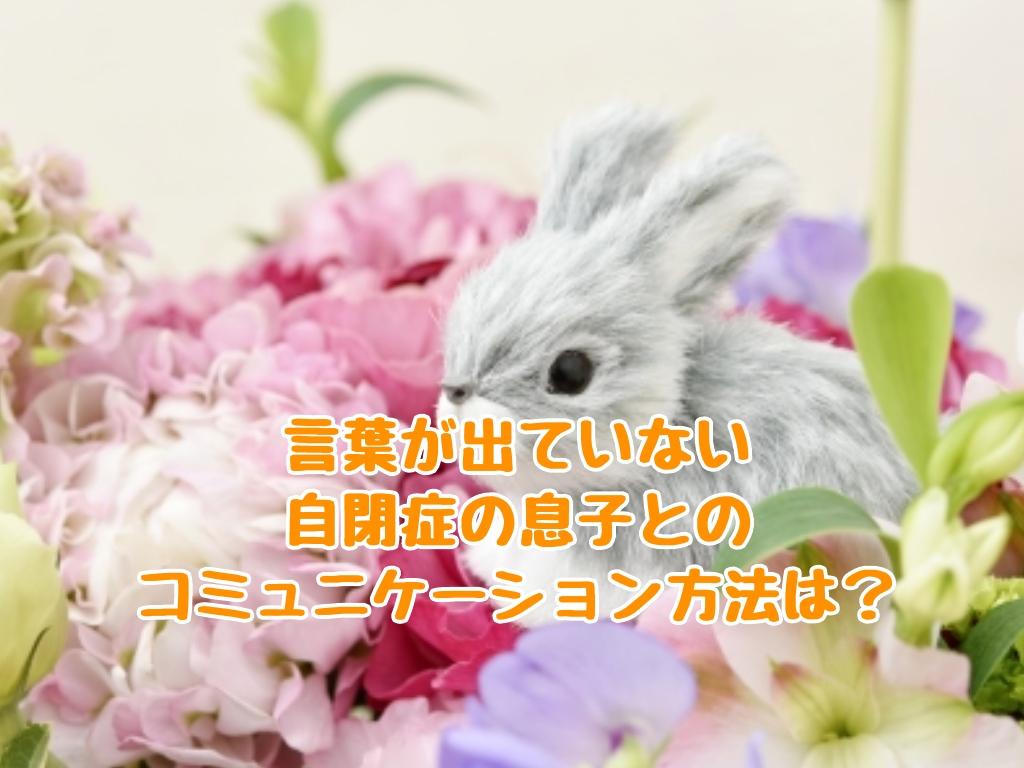 f:id:harukunmama:20190412084629j:plain