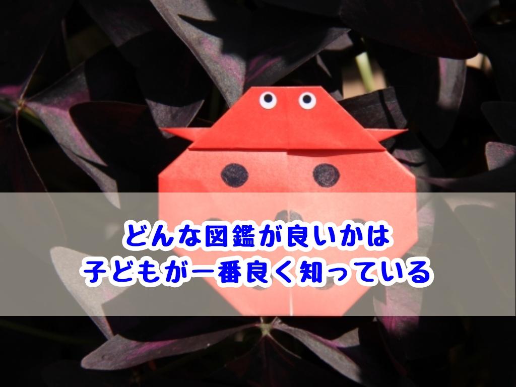 f:id:harukunmama:20190507150847j:plain