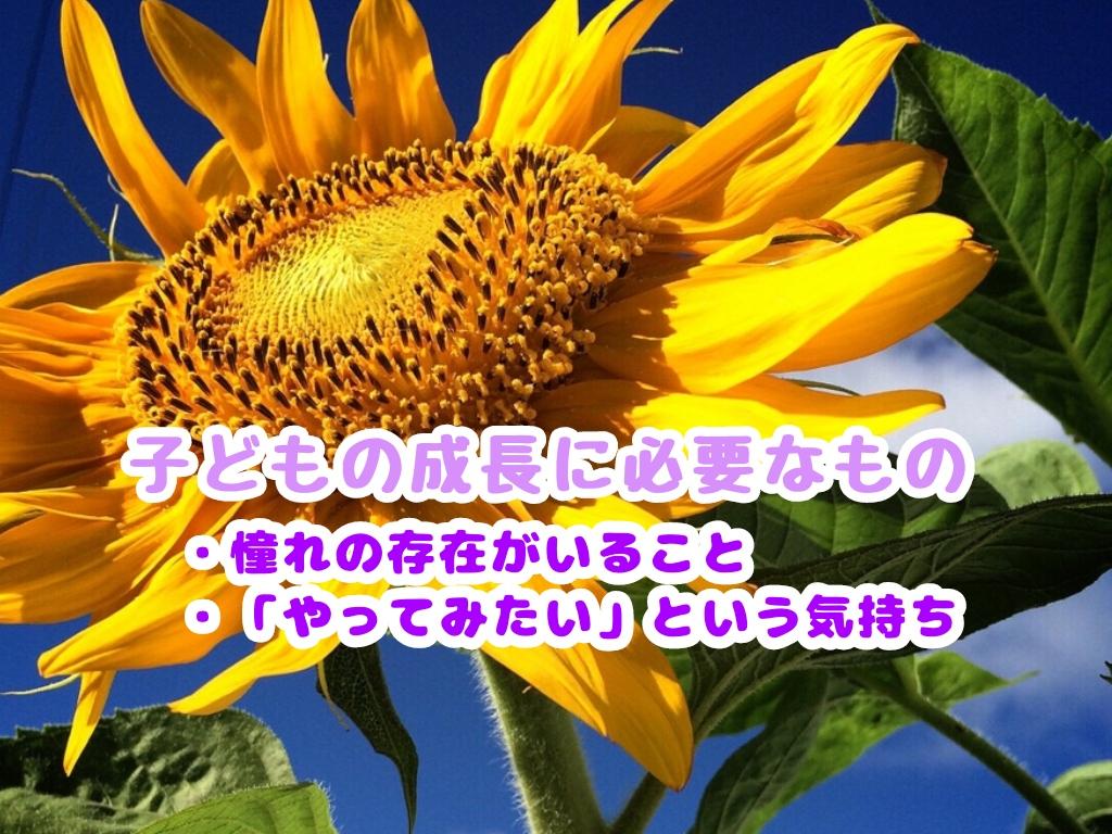 f:id:harukunmama:20190507185147j:plain