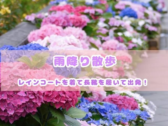 f:id:harukunmama:20190517143307j:image