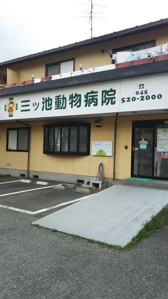 f:id:harumaki17hon:20170618233629j:plain