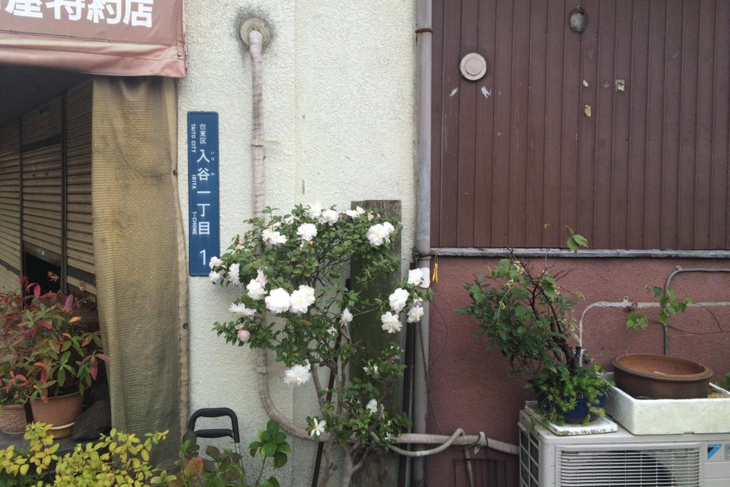 f:id:harumibashi:20180216161850j:plain