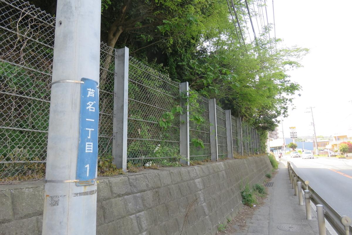 f:id:harumibashi:20200703011100j:plain