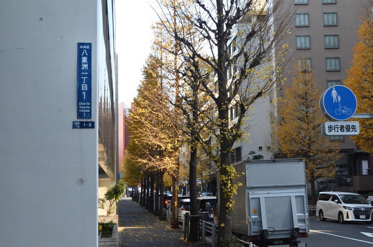 f:id:harumibashi:20210107020748j:plain