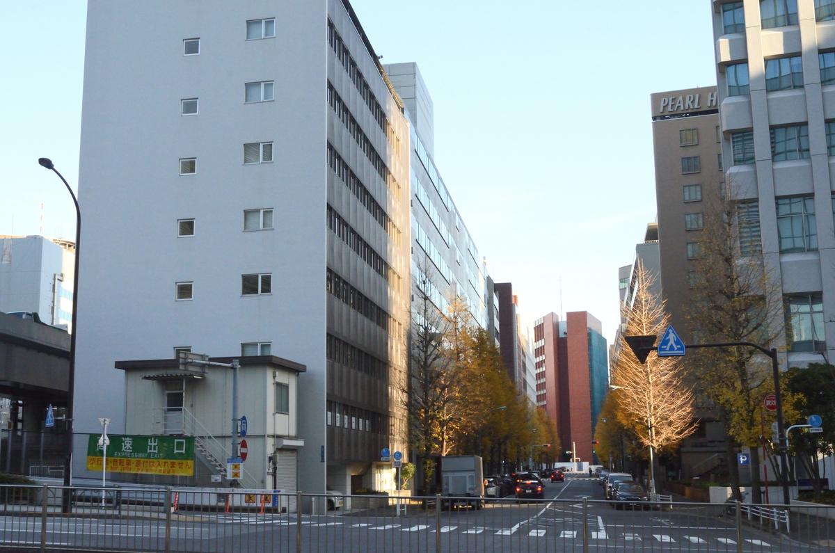 f:id:harumibashi:20210107020935j:plain