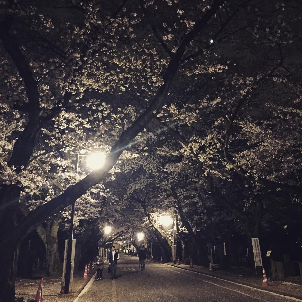 f:id:haruna26:20150402201907j:plain