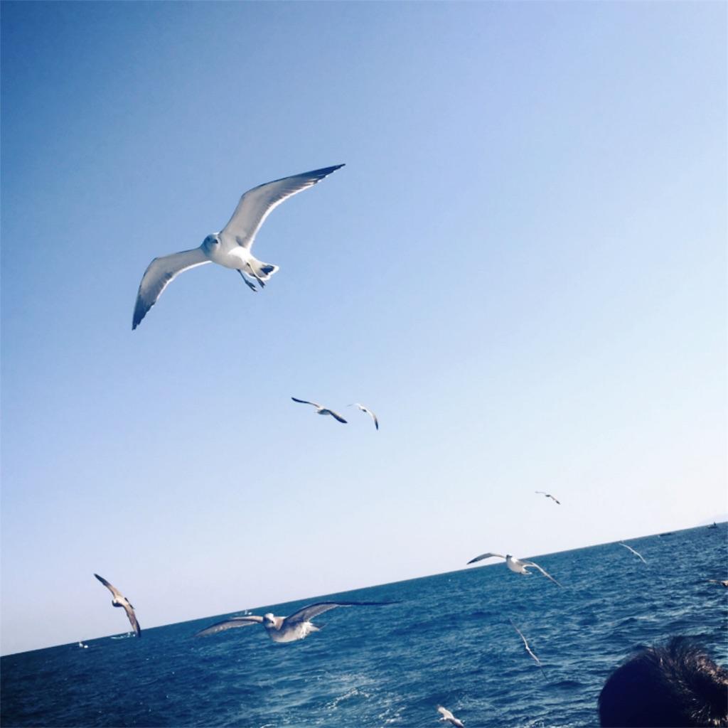 f:id:haruna26:20161114011025j:image:w600