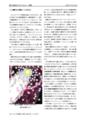 東方化学会誌 vol.4 本文サンプル2
