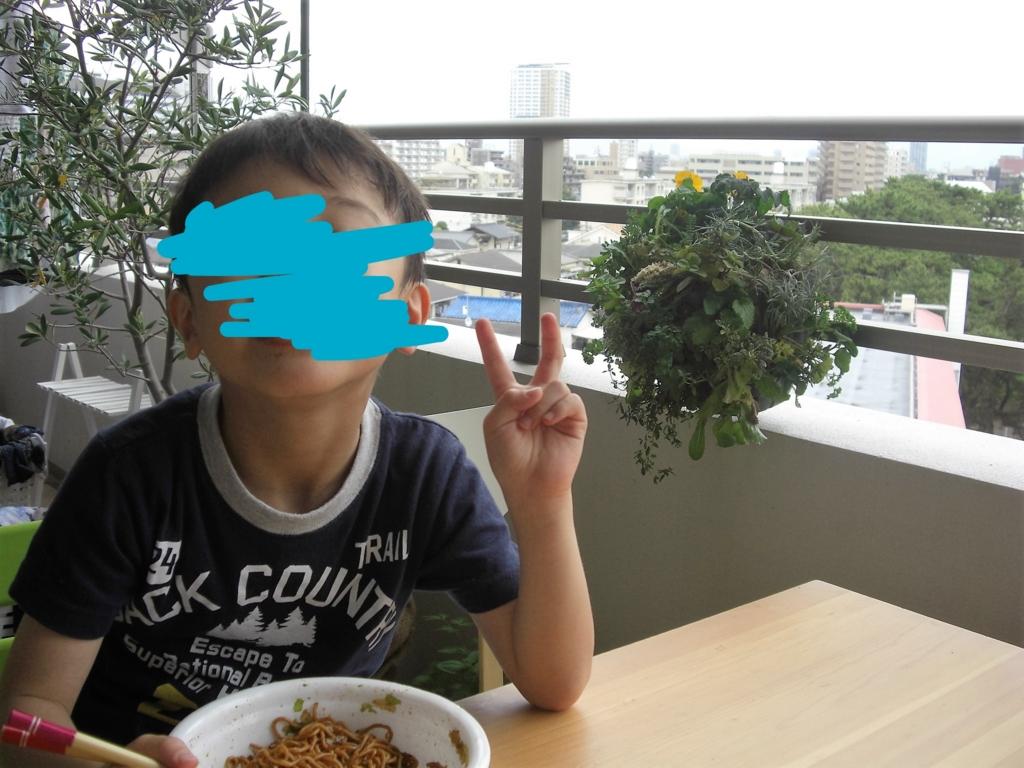 f:id:haruru1019:20170506203559j:plain