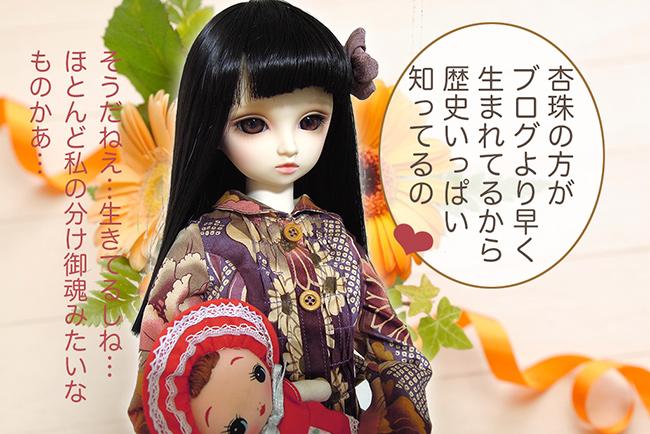 f:id:haruusagi_kyo:20161111162415j:plain