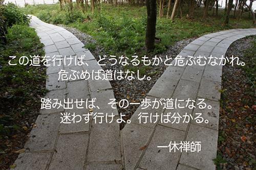 f:id:haruusagi_kyo:20161112135656j:plain