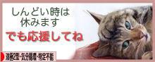 f:id:haruusagi_kyo:20170119191223j:plain