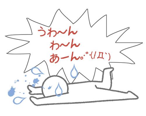 f:id:haruusagi_kyo:20170120211231j:plain