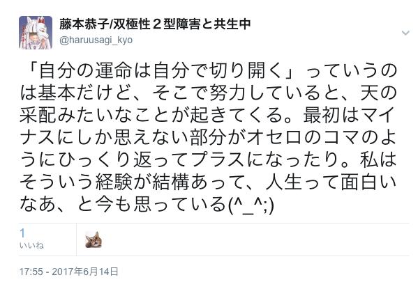 f:id:haruusagi_kyo:20170615073730p:plain