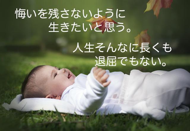 f:id:haruusagi_kyo:20180310204513j:plain