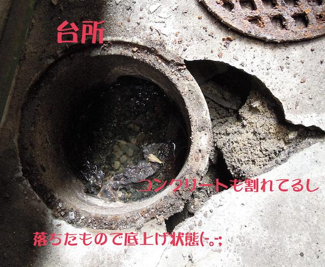 f:id:haruusagi_kyo:20181002135455j:plain